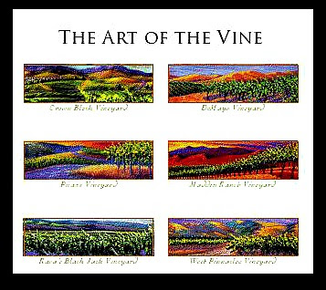 Darcie Kent Vineyards - Art of the Vine