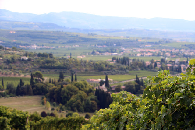 Valpolicella Verona