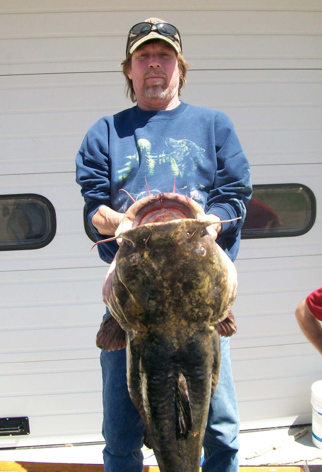 Gr8LakesCamper: Niles man catches new state record catfish ...