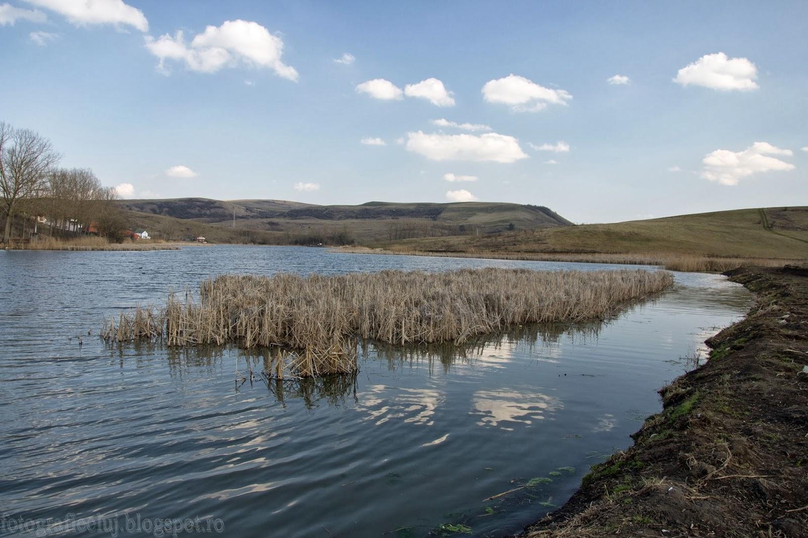 Lacul Chinteni - o destinație de weekend pentru undițari și... vânătorii de imagini _DSC3258