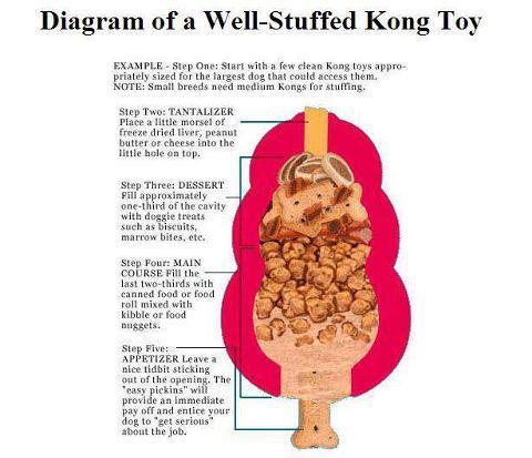 Food Stuffing Dog Toys