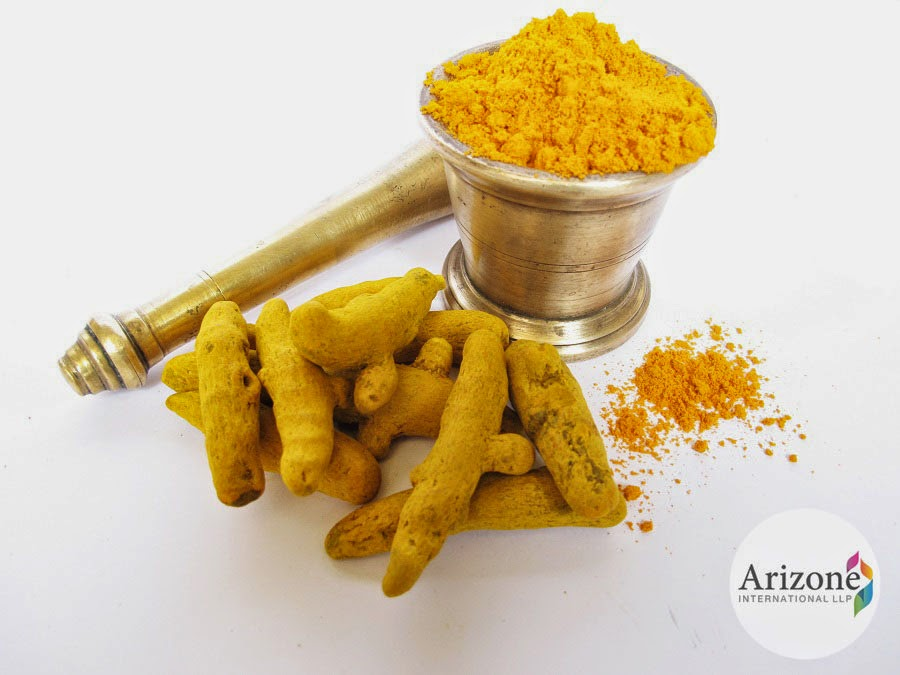 Turmeric Powder Arizone International LLP Vapi