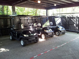 Center Parcs Huttenheugte E-cars