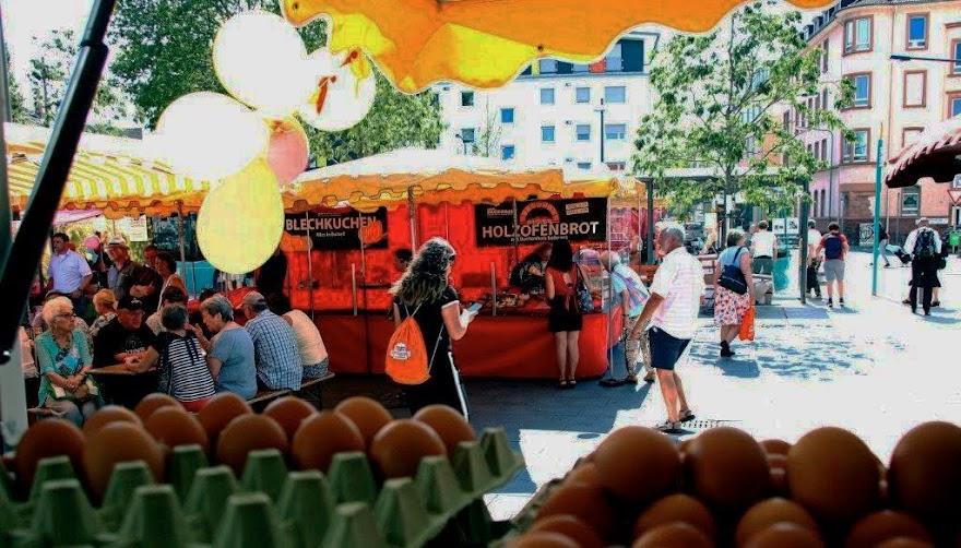 Ein Jahr Rödelheimer Wochenmarkt