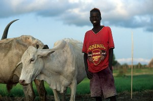 the emergence of pastoralism in africa essay Pastoral nomadism and health in africa the development of nomadic pastoralism in africa in unicef staff working papers number 8.