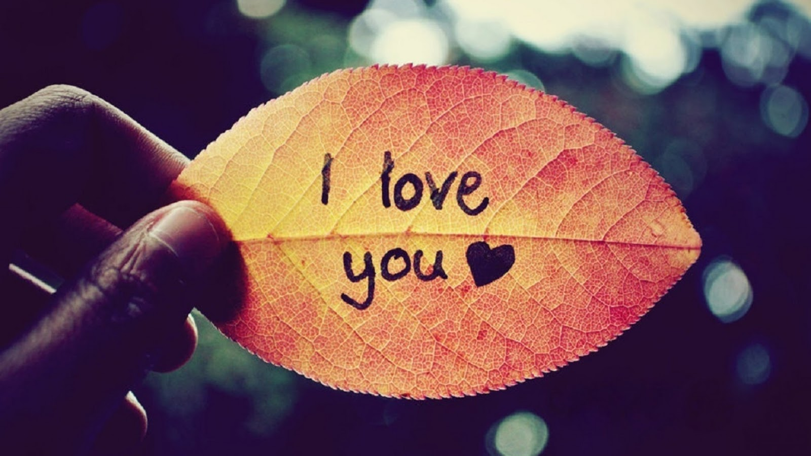 HD I Love You Images for Whatsapp