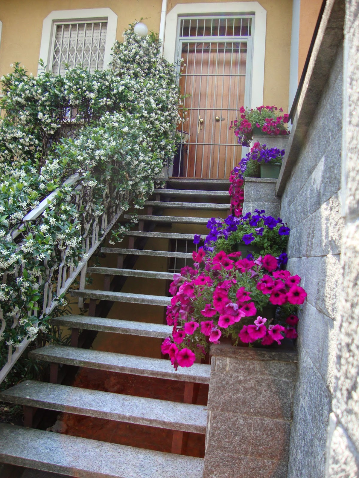 Un piccolo giardino in città: Fiori e piante sulle scale di città