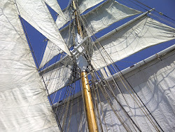 View up the Mast!