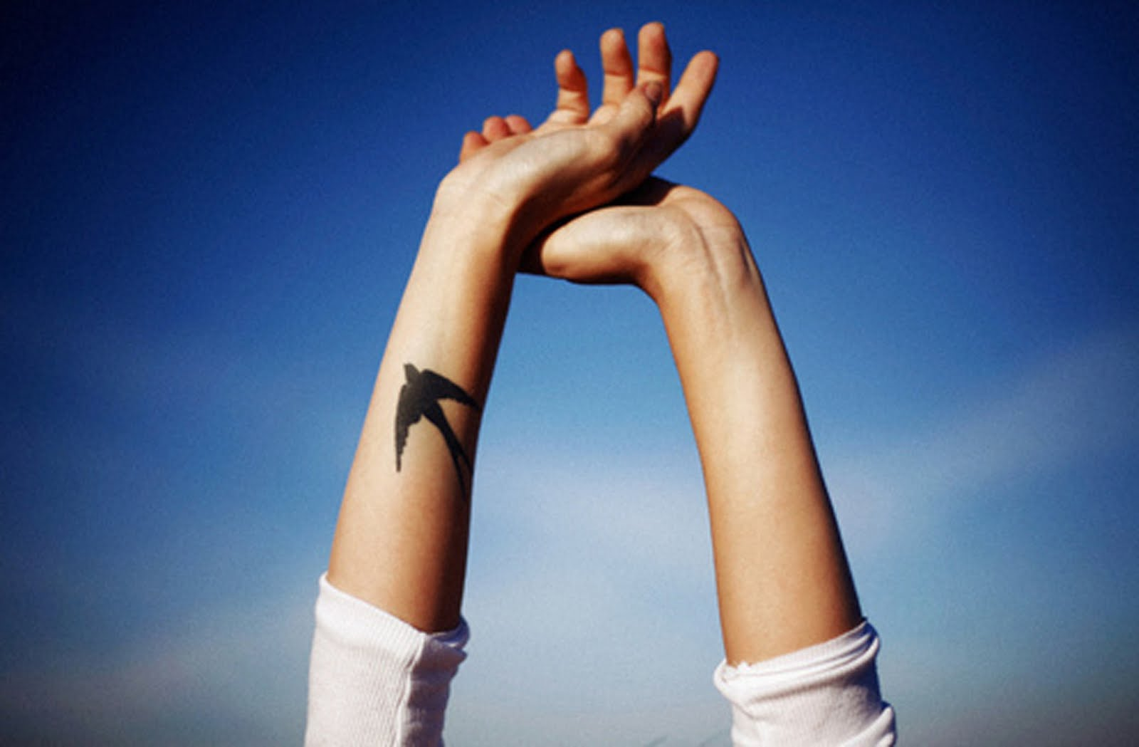 Что обозначает тату ласточек на руке