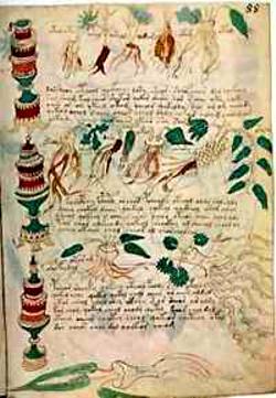 Resultado de imagen de manuscrito voynich