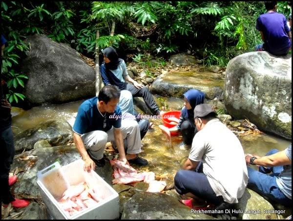 Menyiang Ikan Di Sungai