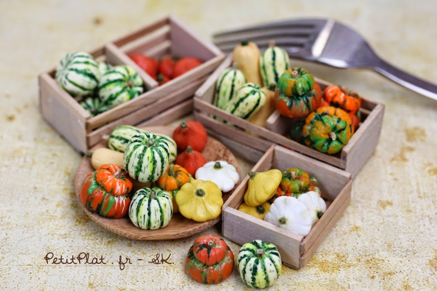 Miniature Winter / autumn squashes : Butternut, Delicata, Pâtisson, Hokkaido, Sweet Dumpling, Turksturban