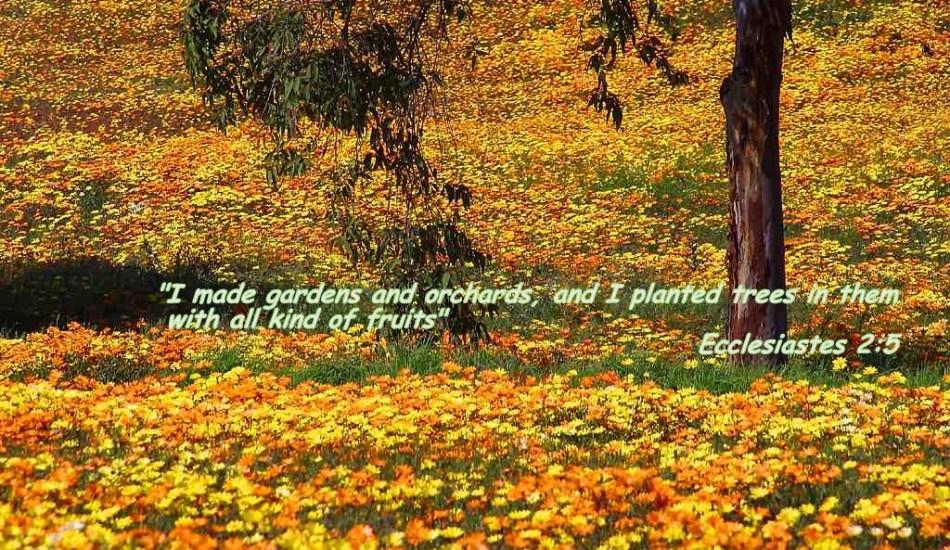 christian fall wallpaper - photo #2