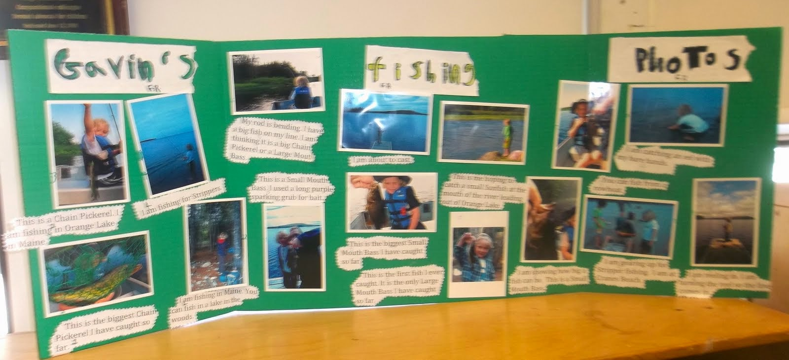 Gavin's Fishing Display