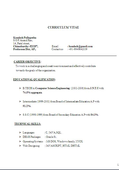 Short Resume Template Example. Sample Resumes For Students