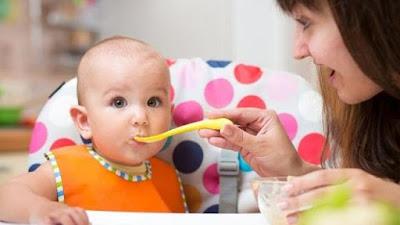 Makanan Untuk Anak 1 Tahun