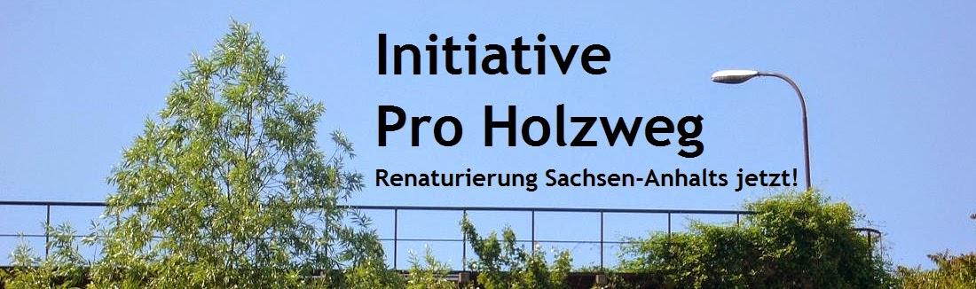 Initiative Pro Holzweg