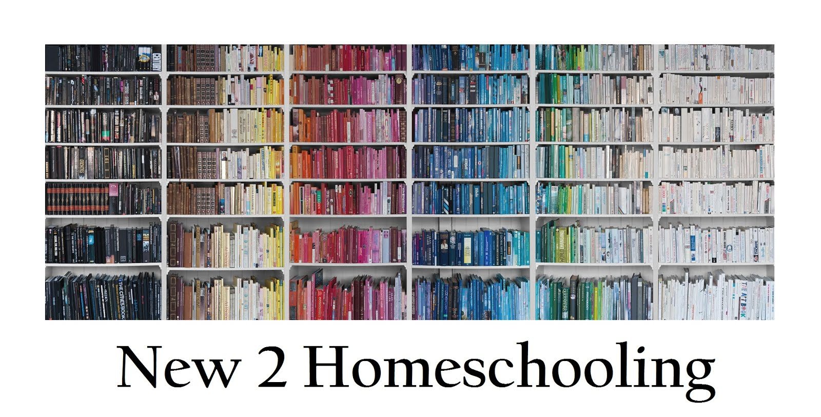 New 2 Homeschooling