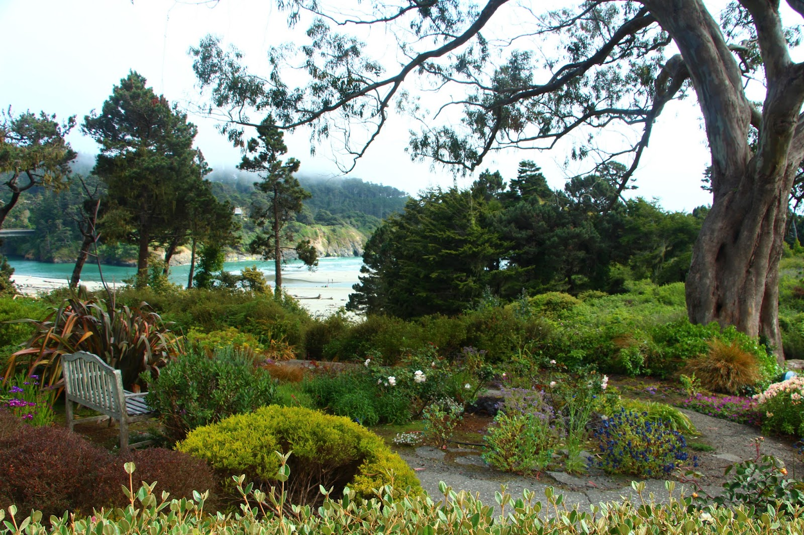 Secluded Views Of The Ocean And Big River From The Gardens Of Alegria  Oceanfront Inn U0026 Cottages
