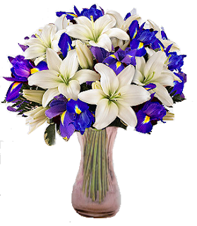 bloomex-hanukkah-bouquet-flowers