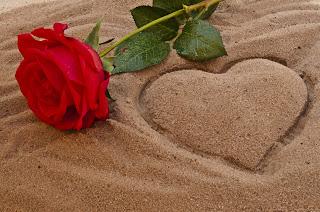 liebesbilder, herzenbilder, herz, love, love picture, rose, strand, sand