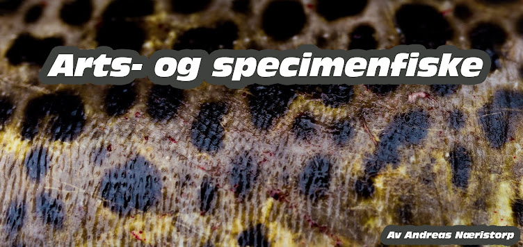 Arts- og specimenfiske