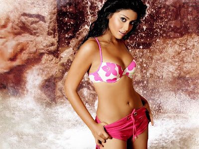 Sparklyshell Bollywood Actress Shriya Saran Wallpapers Without Clothes