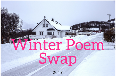 Winter Swap '17