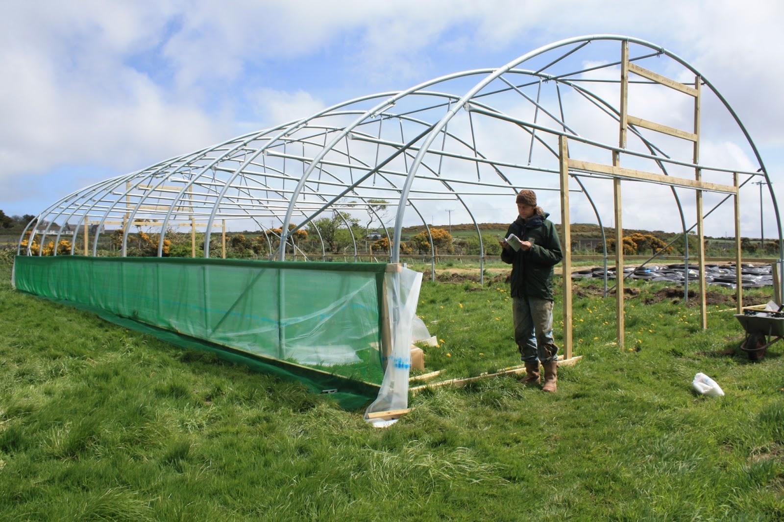 Bosavern Community Farm Skinning The New Polytunnel