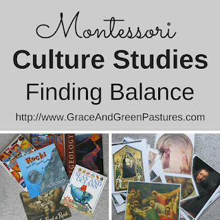 Culture Studies:  Finding Balance... and Topics!