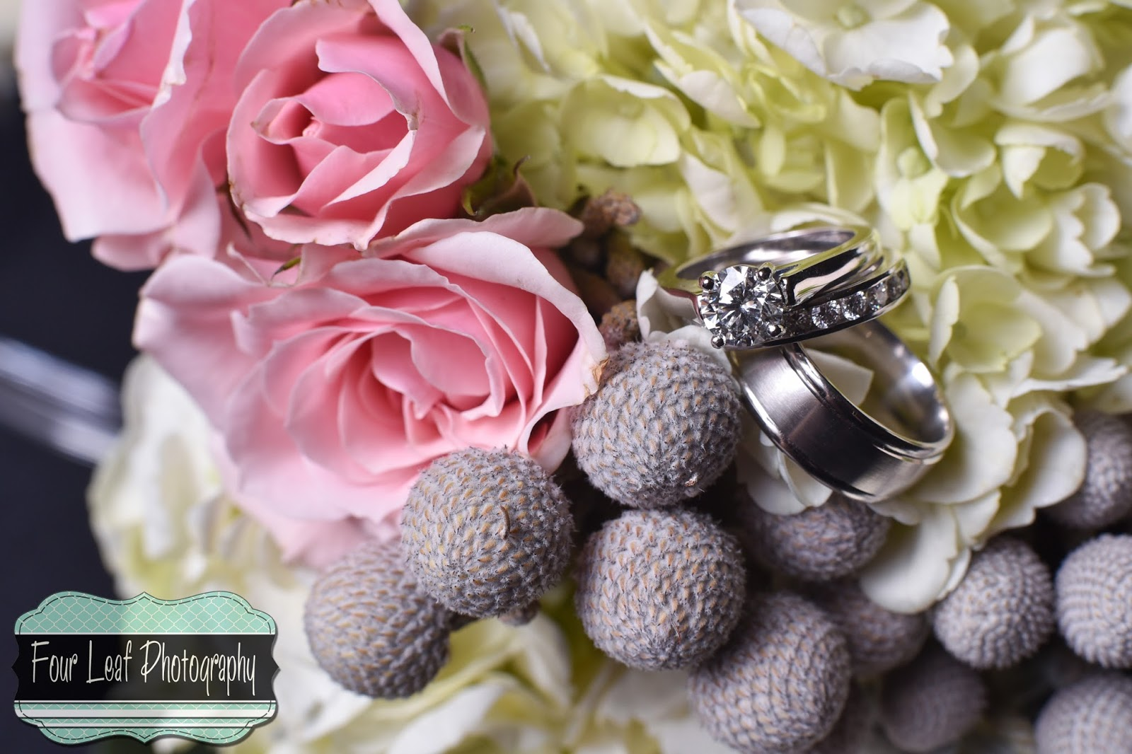 Four Leaf Photography - Louisville Wedding Photographer: January 2015