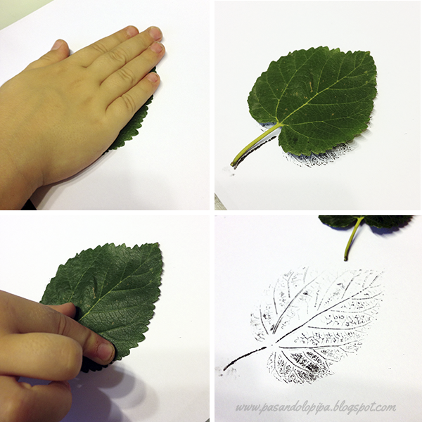 Pasos para estampar hojas
