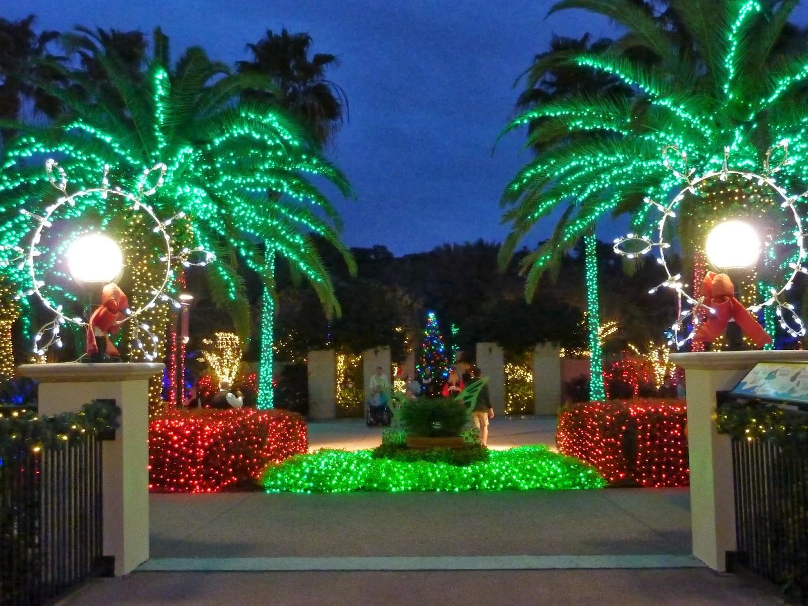 Dream chaser brrr mn was cold back to florida - Florida botanical gardens christmas lights ...