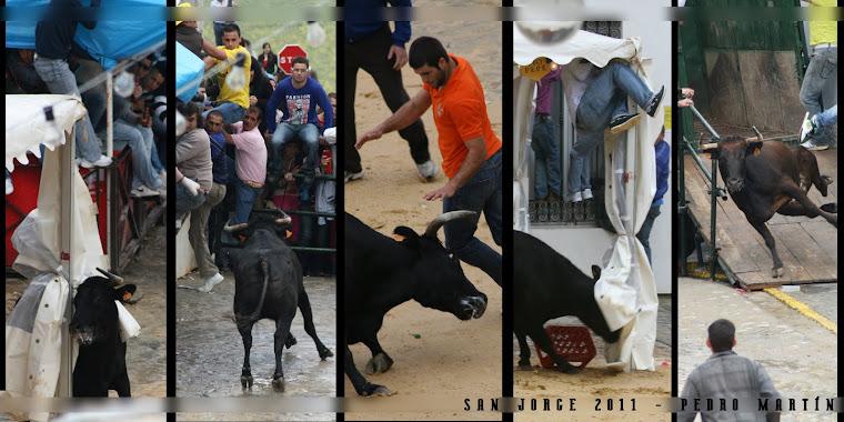 MEJORES IMAGENES SAN JORGE 2011