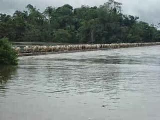 rio cheio