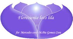 """Florecinete Loto  Lila"""