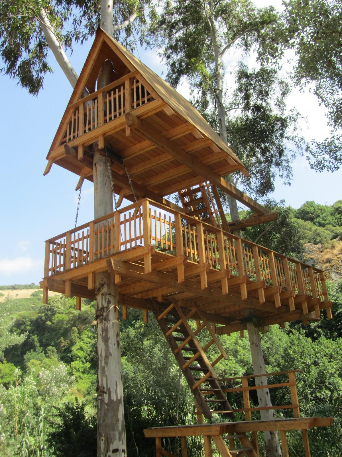 Sa birdiera la casa sull 39 albero - Casa sull albero airbnb ...