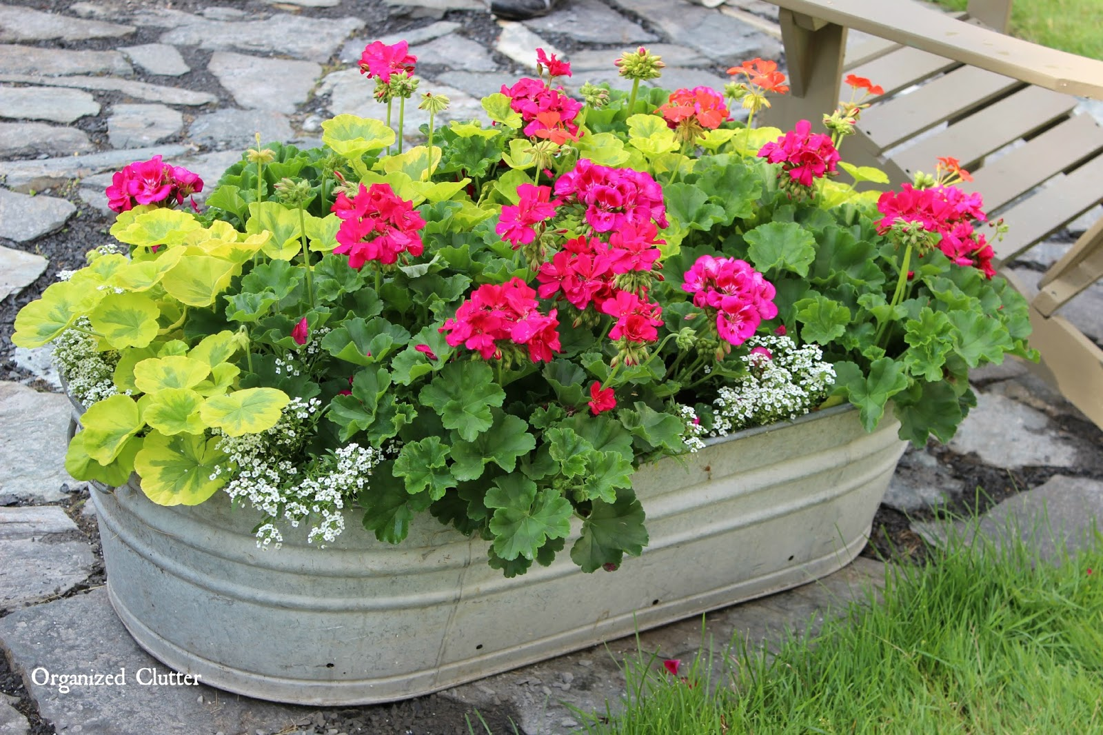 More beautiful flowers in junky containers organized clutter galvanized garden love organizedclutter izmirmasajfo