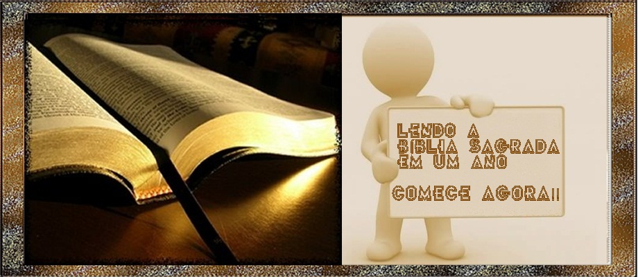 LER A BÍBLIA EM UM ANO