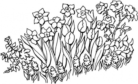 Coloring pages for kids flower garden coloring pages for kids for Flower garden coloring pages printable