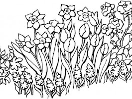 Free Printable Summer Coloring Pages Adult