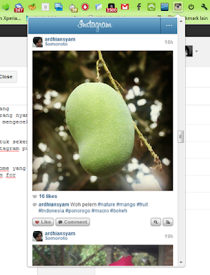 Instagram for Chrome, Explore Photos Instagram with Google Chrome 2