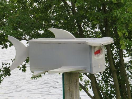 shark mailbox