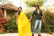 Ee Manase Movie Photo Gallery-thumbnail-8