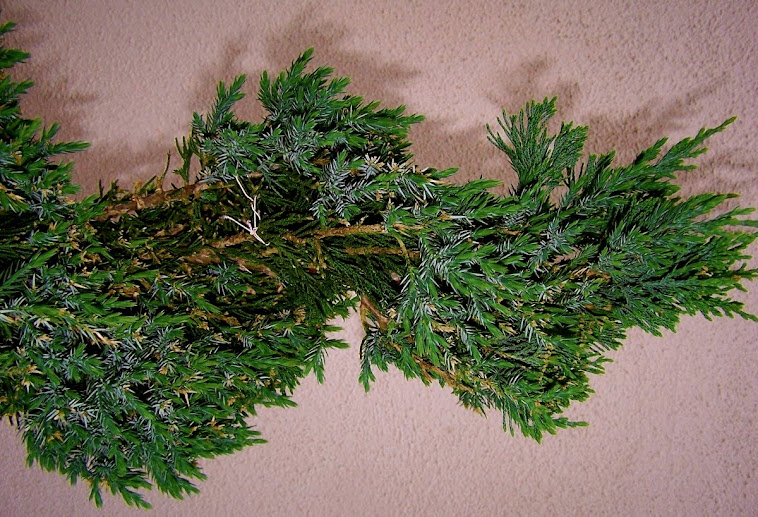 Horizontal Foliage