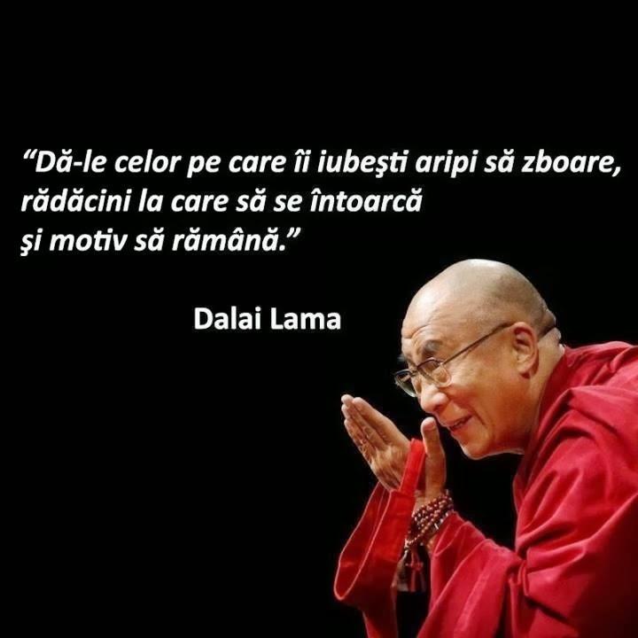 Intelepciune-Dalai Lama