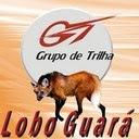 GRUPO DE TRILHA LOBO GUARÁ