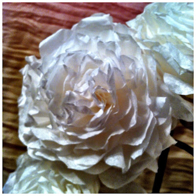 white-rose-made-from-coffee-filters