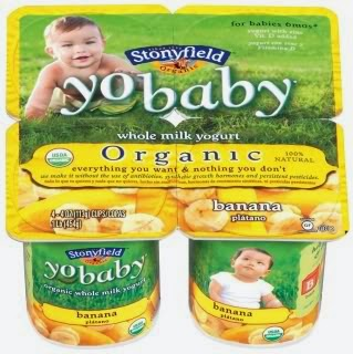 Best Yogurts for Babies