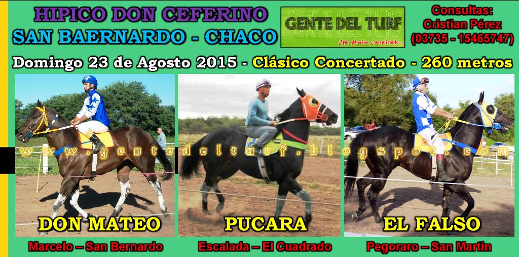 San Bernardo 23-08